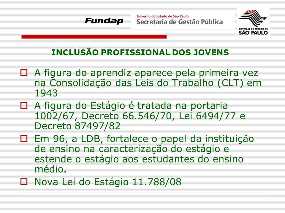 INCLUSÃO PROFISSIONAL DOS JOVENS