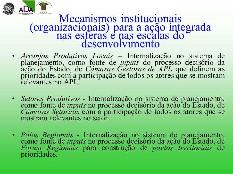 Mecanismos institucionais (organizacionais) para a ação integrada nas esferas e nas escalas do desenvolvimento
