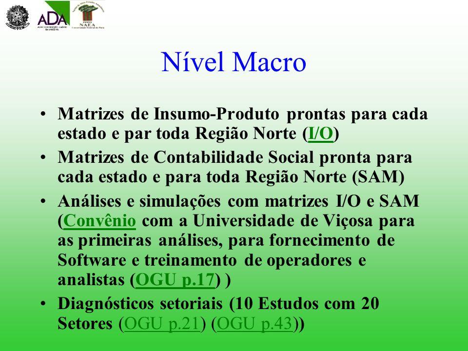 Nível Macro Matrizes de Insumo-Produto prontas para cada estado e par toda Região Norte (I/O)