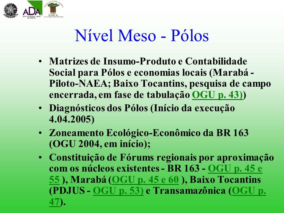 Nível Meso - Pólos