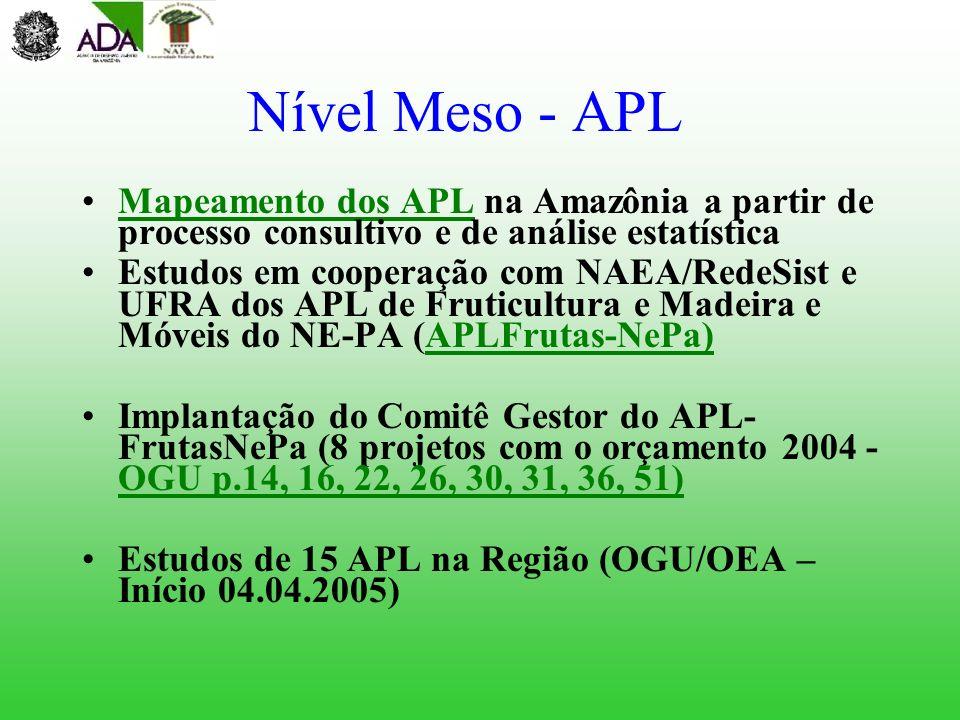 Nível Meso - APL Mapeamento dos APL na Amazônia a partir de processo consultivo e de análise estatística.