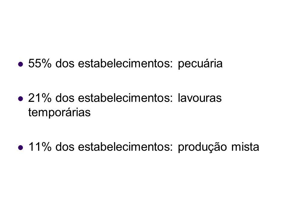 55% dos estabelecimentos: pecuária