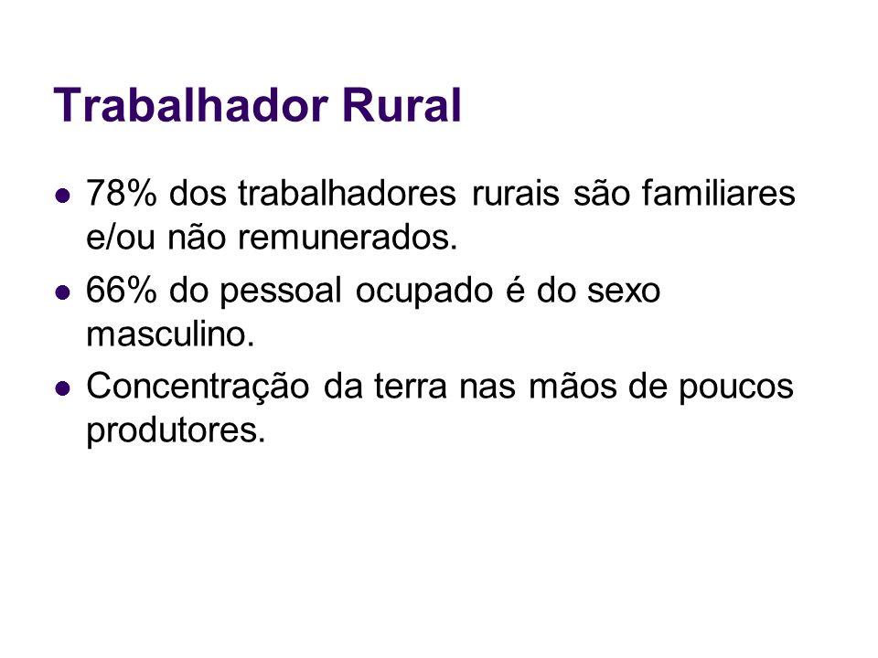 Trabalhador Rural78% dos trabalhadores rurais são familiares e/ou não remunerados. 66% do pessoal ocupado é do sexo masculino.