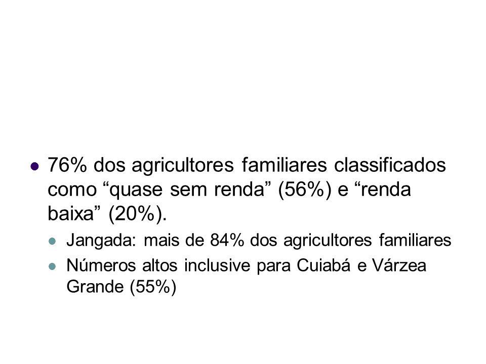 76% dos agricultores familiares classificados como quase sem renda (56%) e renda baixa (20%).