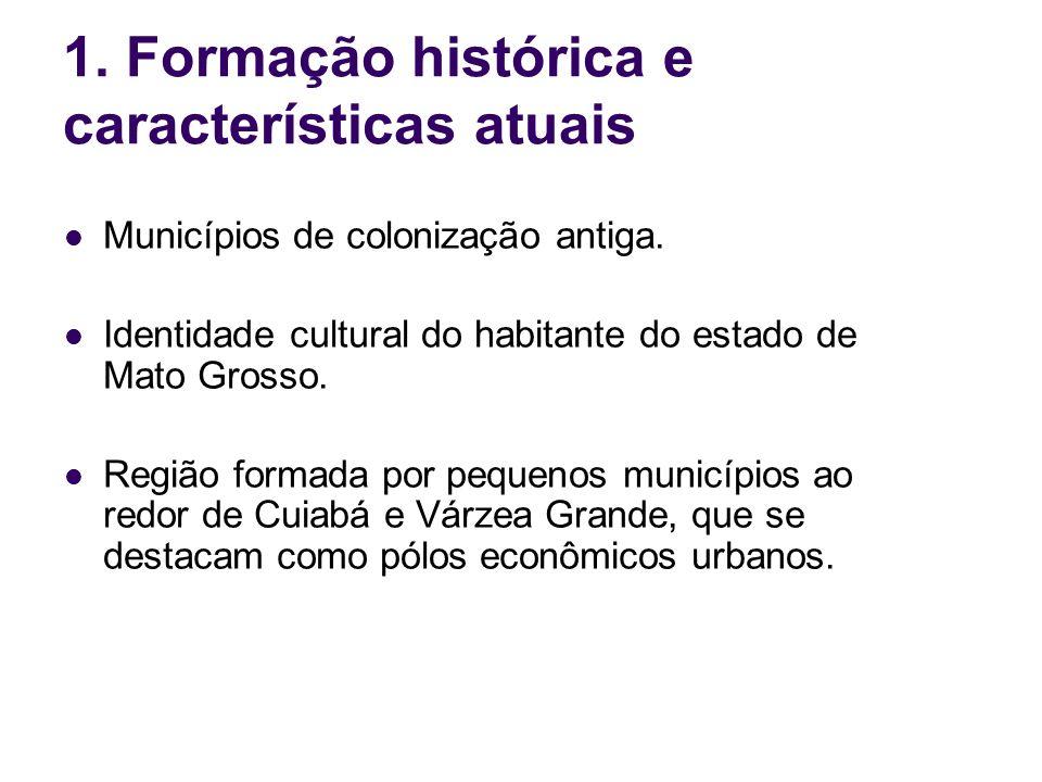 1. Formação histórica e características atuais