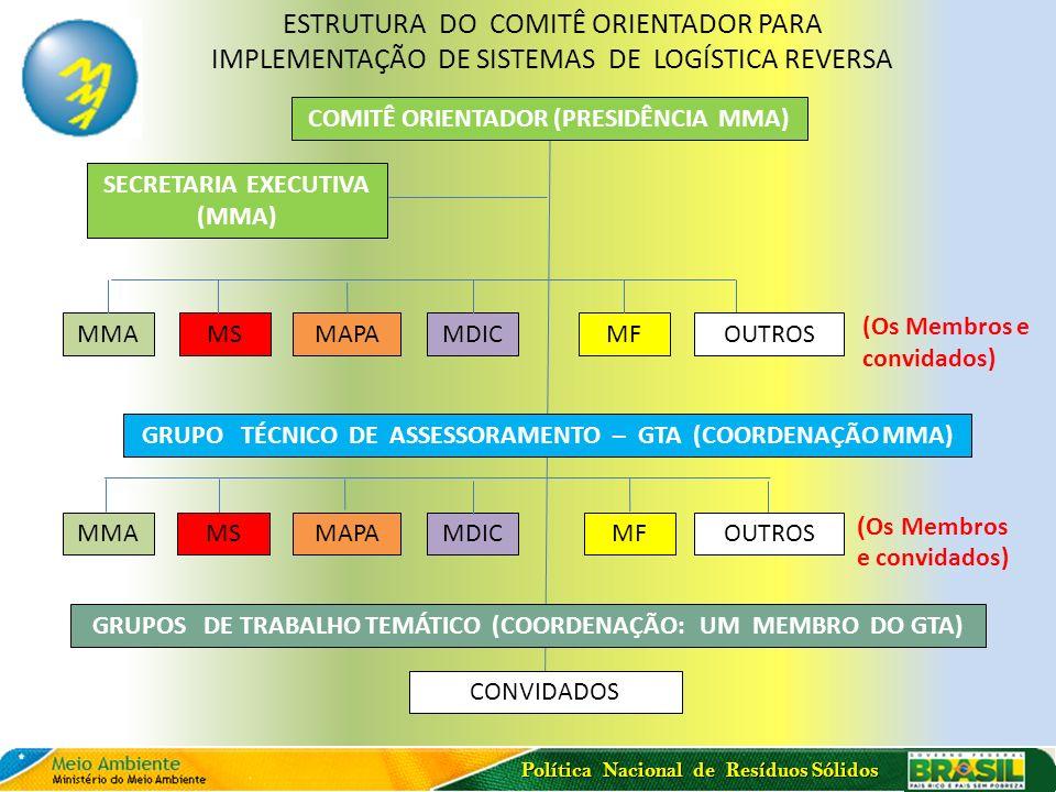 ESTRUTURA DO COMITÊ ORIENTADOR PARA