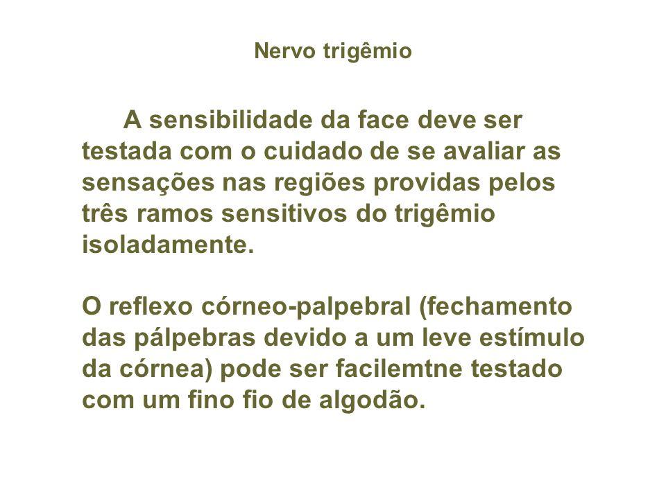 Nervo trigêmio
