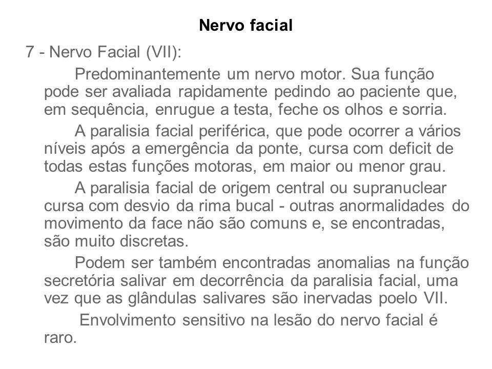Nervo facial 7 - Nervo Facial (VII):