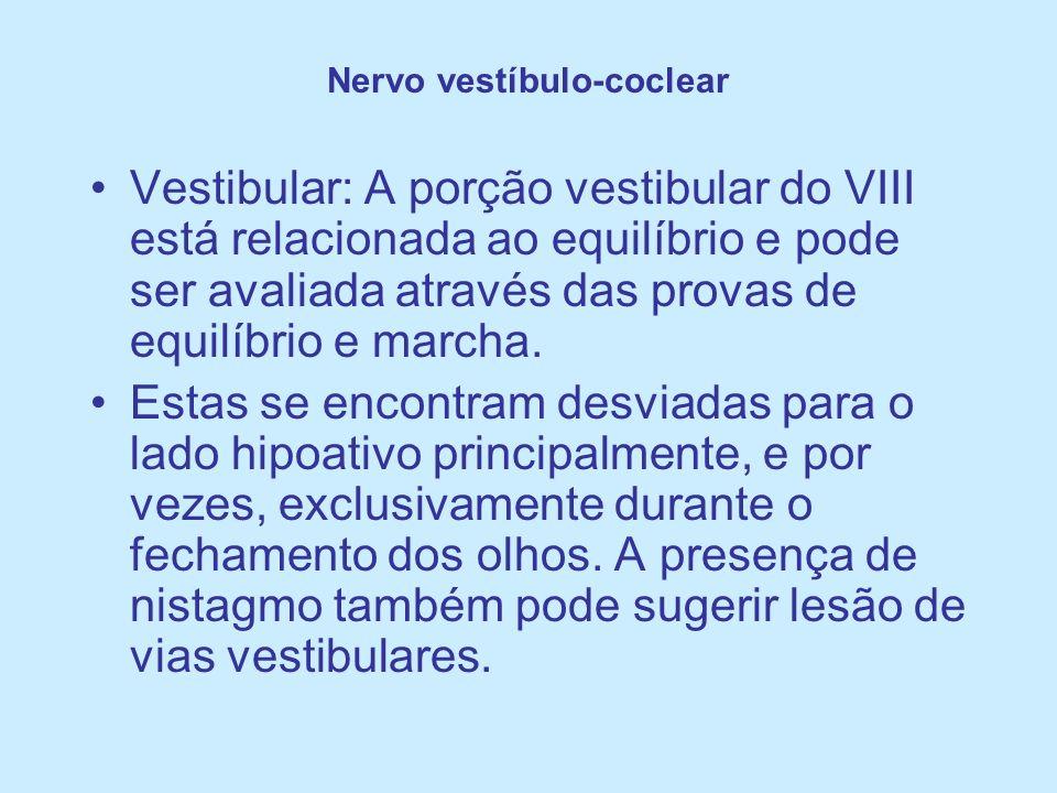 Nervo vestíbulo-coclear