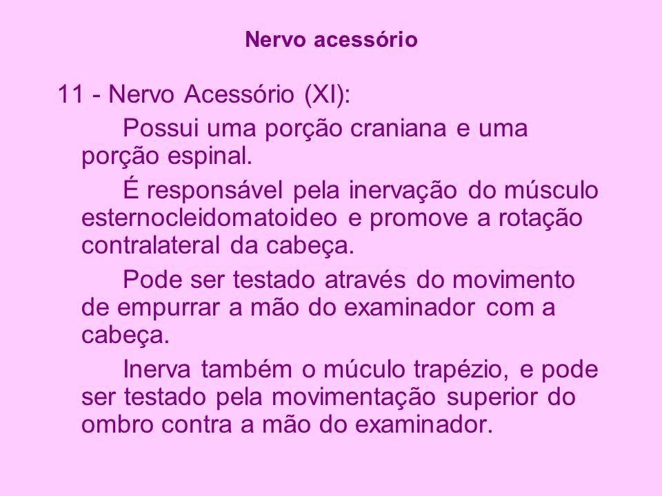 11 - Nervo Acessório (XI):