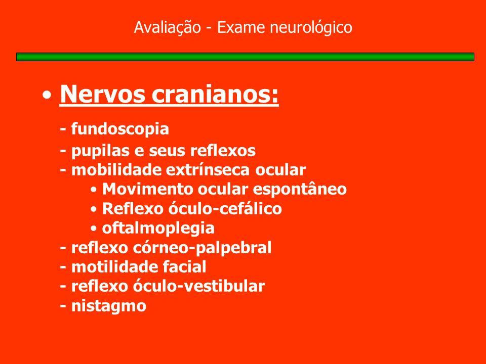 Avaliação - Exame neurológico