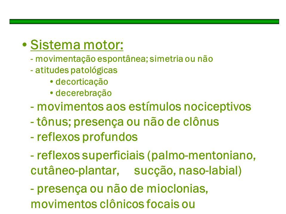 Sistema motor: - movimentação espontânea; simetria ou não