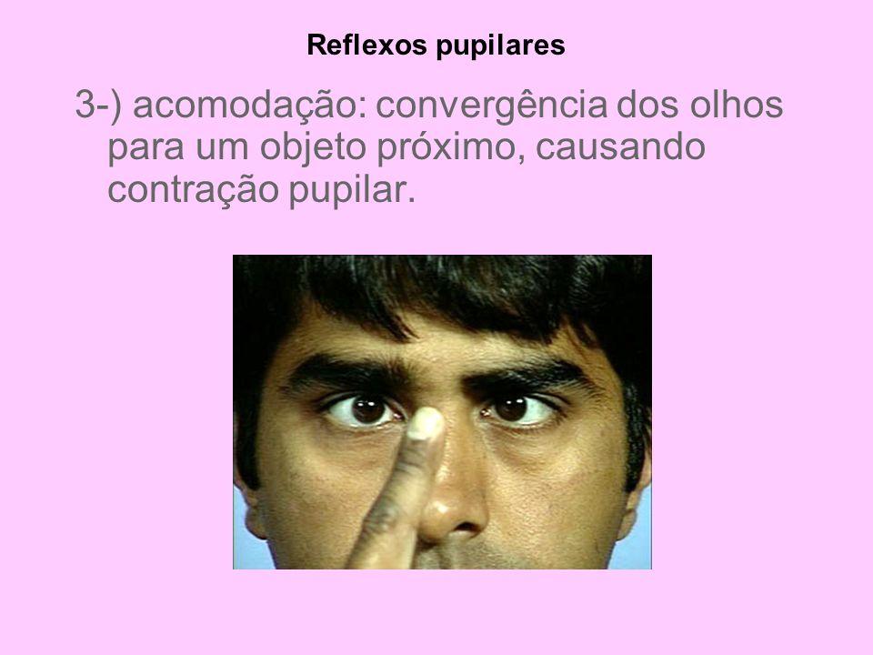 Reflexos pupilares 3-) acomodação: convergência dos olhos para um objeto próximo, causando contração pupilar.