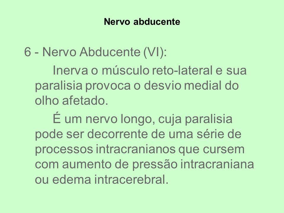 6 - Nervo Abducente (VI):