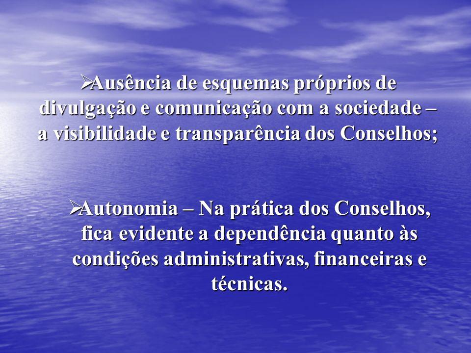 Ausência de esquemas próprios de divulgação e comunicação com a sociedade – a visibilidade e transparência dos Conselhos;