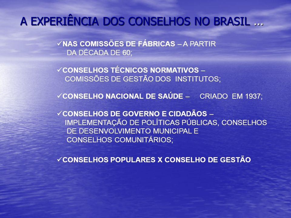 A EXPERIÊNCIA DOS CONSELHOS NO BRASIL ...