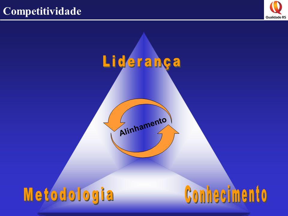 Competitividade Liderança Alinhamento Conhecimento Metodologia