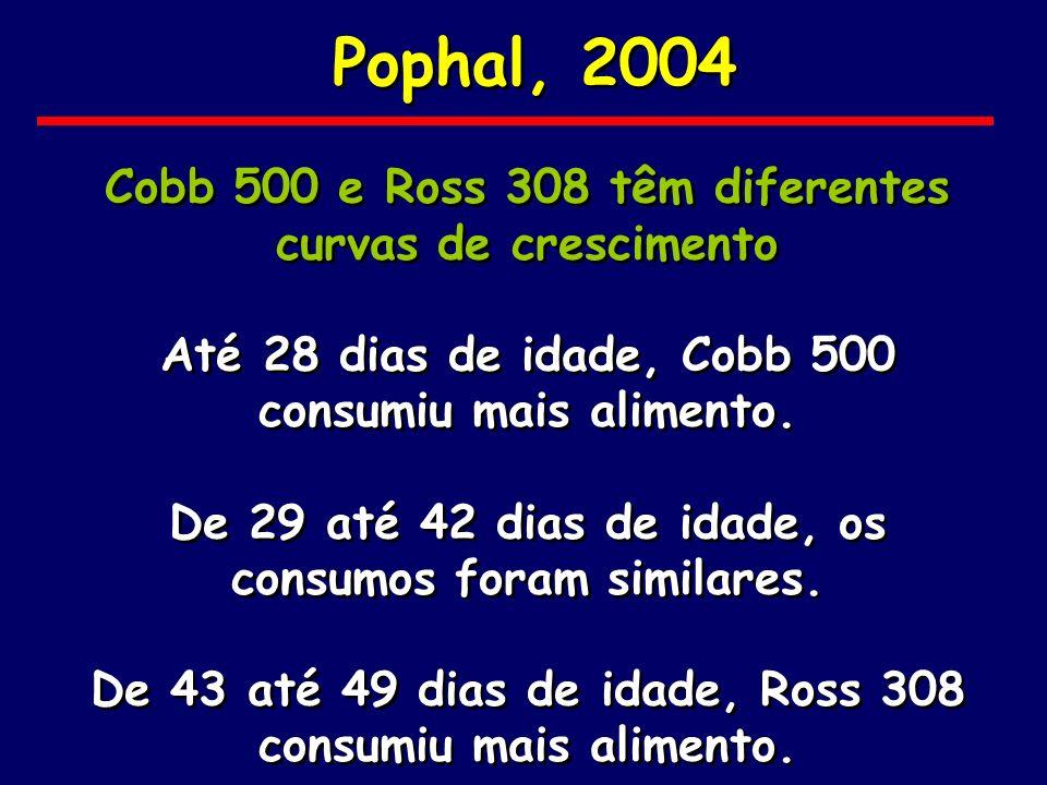 Pophal, 2004 Cobb 500 e Ross 308 têm diferentes curvas de crescimento