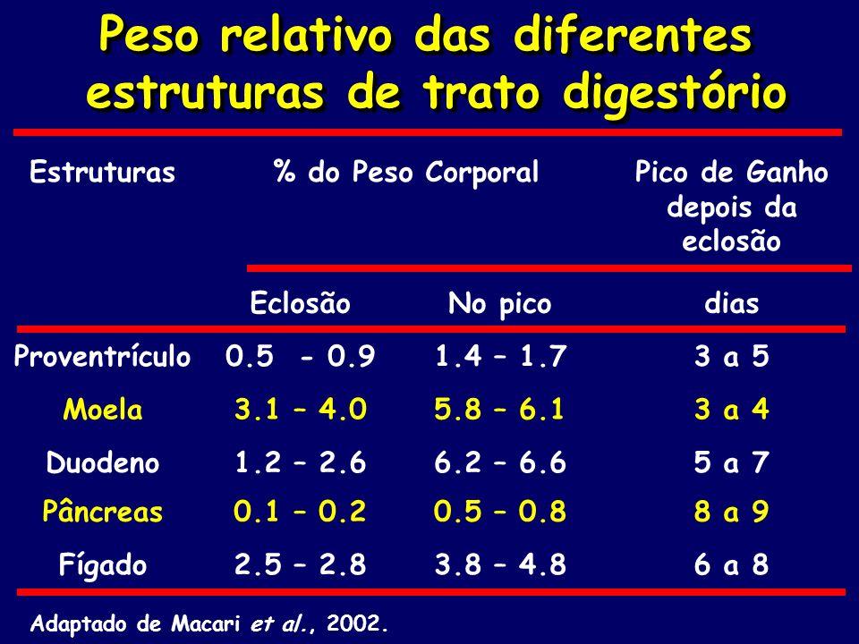 Peso relativo das diferentes estruturas de trato digestório
