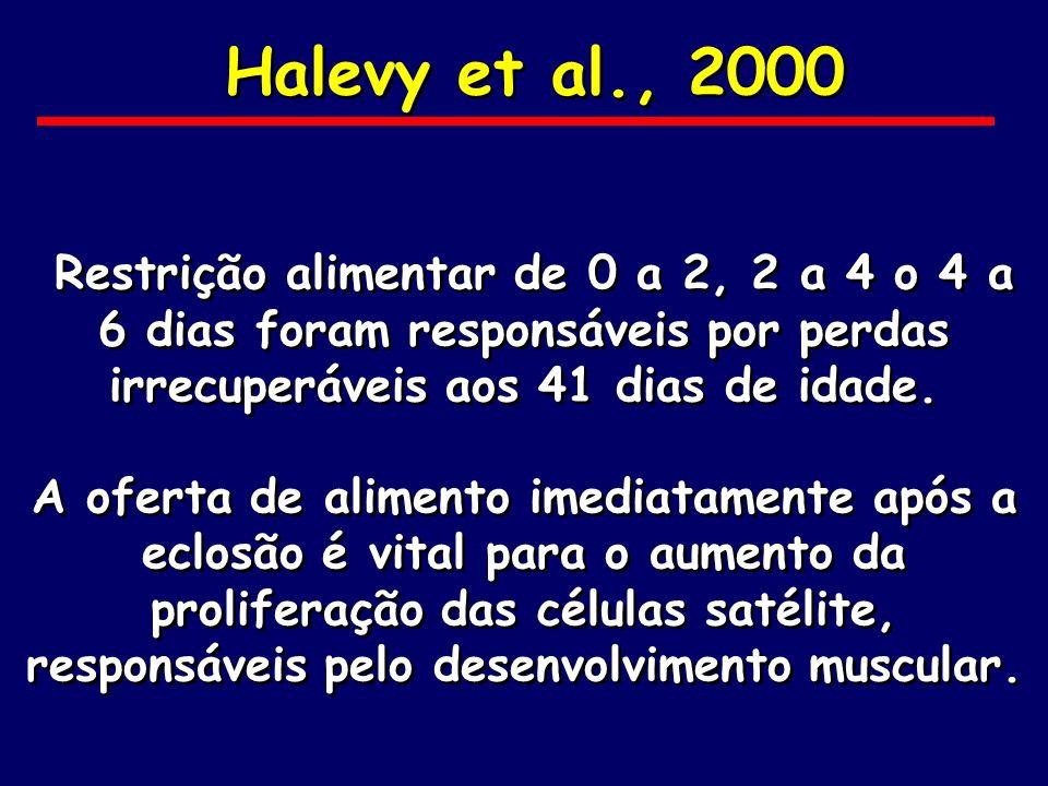 Halevy et al., 2000Restrição alimentar de 0 a 2, 2 a 4 o 4 a 6 dias foram responsáveis por perdas irrecuperáveis aos 41 dias de idade.
