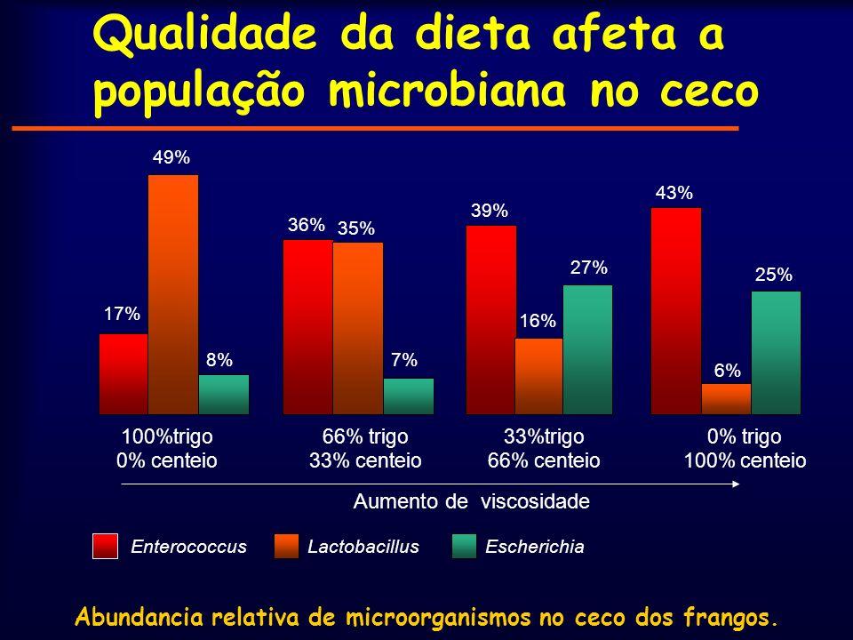Qualidade da dieta afeta a população microbiana no ceco