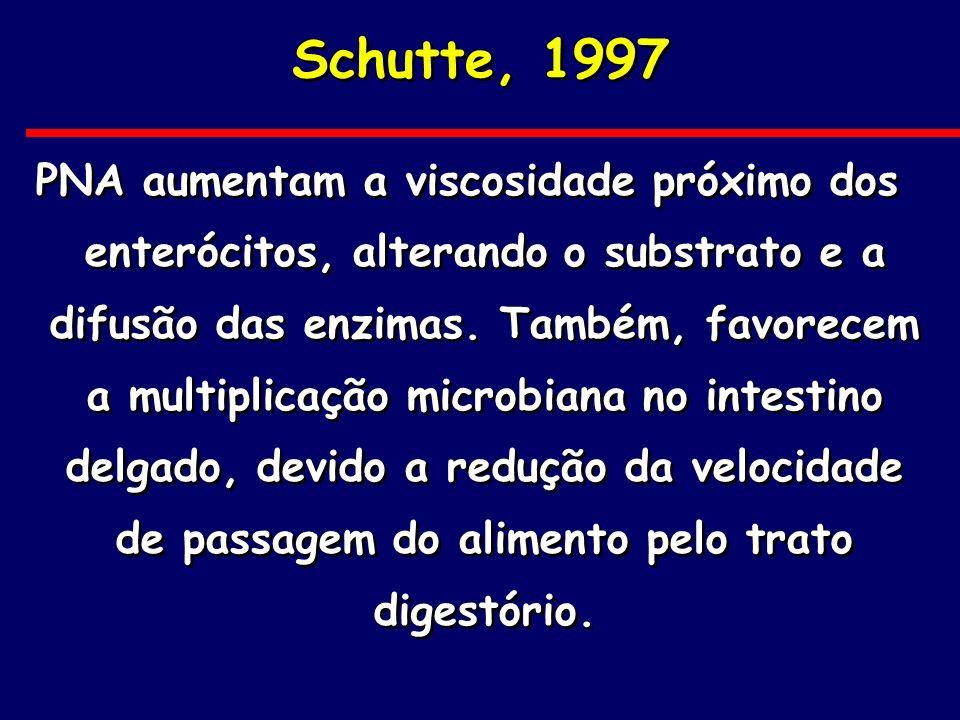 Schutte, 1997