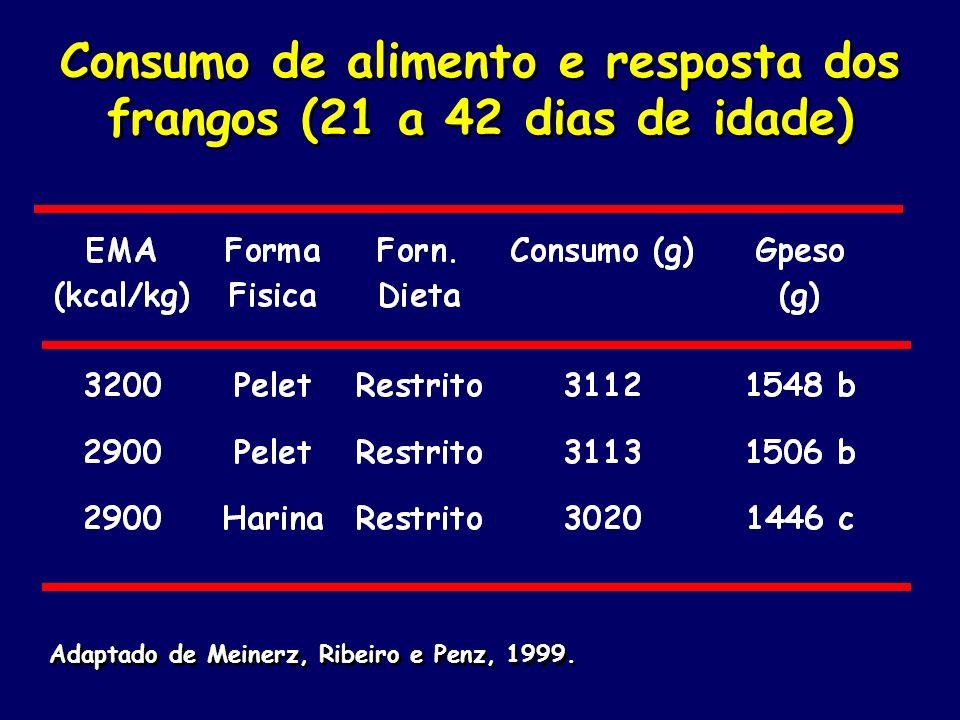 Consumo de alimento e resposta dos frangos (21 a 42 dias de idade)