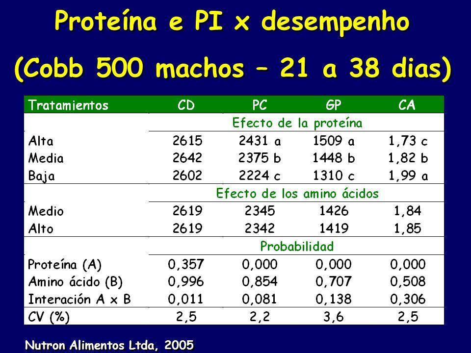 Proteína e PI x desempenho