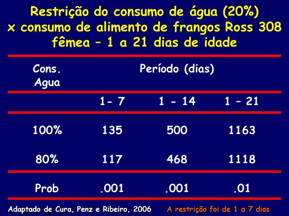 Restrição do consumo de água (20%) x consumo de alimento de frangos Ross 308 fêmea – 1 a 21 dias de idade
