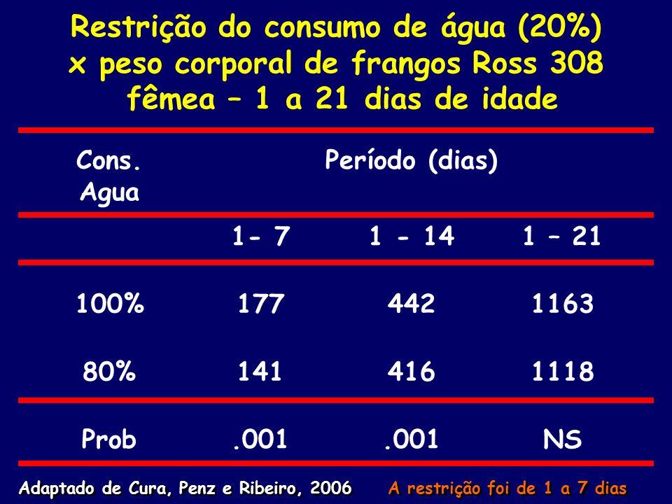 Restrição do consumo de água (20%) x peso corporal de frangos Ross 308 fêmea – 1 a 21 dias de idade