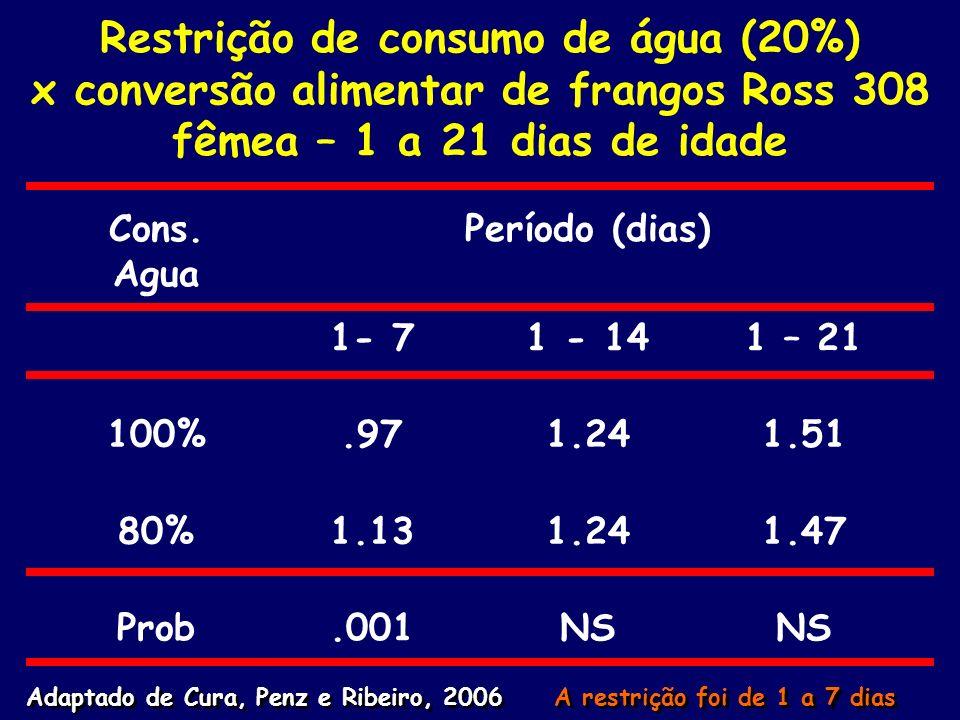 Restrição de consumo de água (20%) x conversão alimentar de frangos Ross 308 fêmea – 1 a 21 dias de idade
