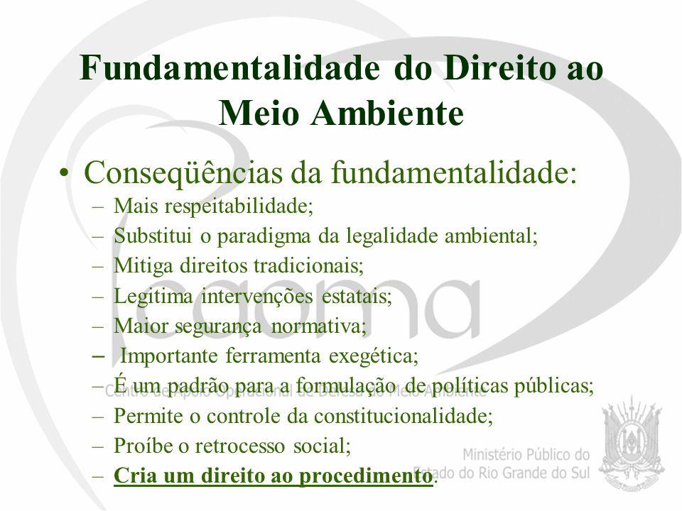 Fundamentalidade do Direito ao Meio Ambiente