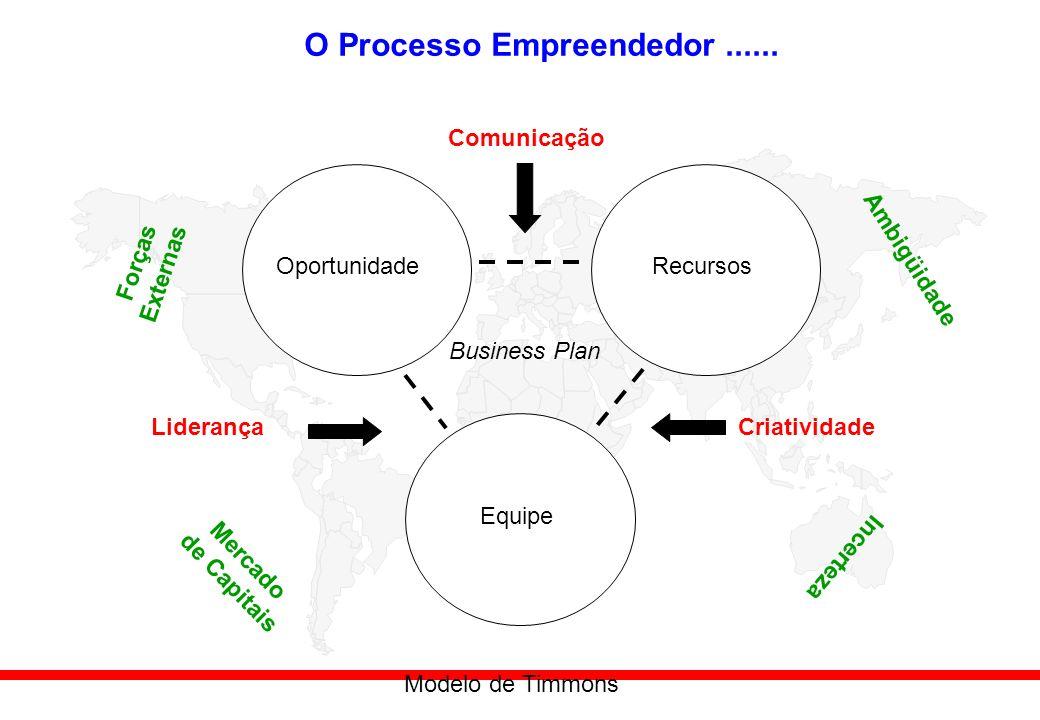 O Processo Empreendedor ......