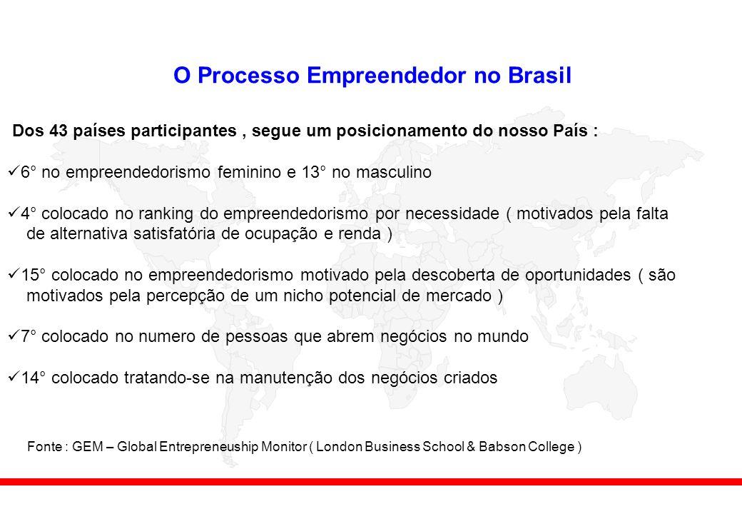 O Processo Empreendedor no Brasil