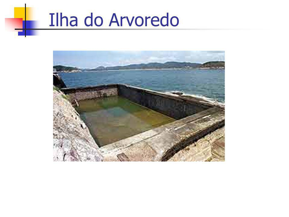 Ilha do Arvoredo