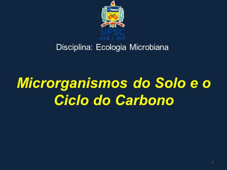Microrganismos do Solo e o