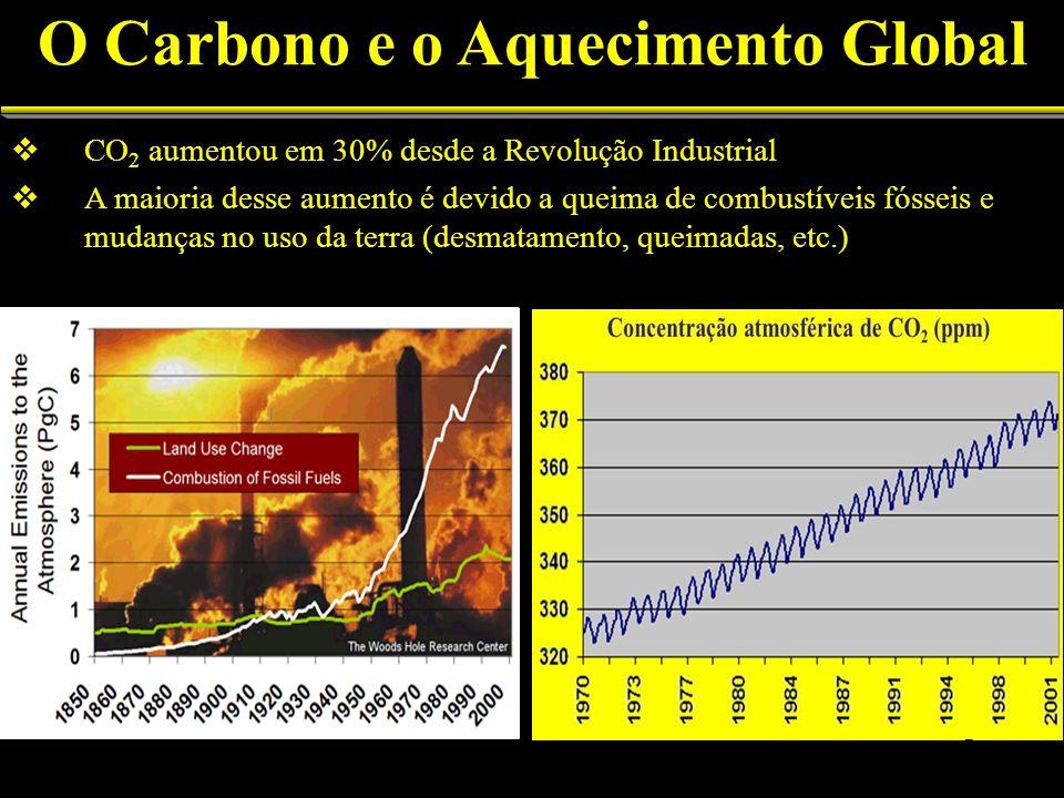 O Carbono e o Aquecimento Global