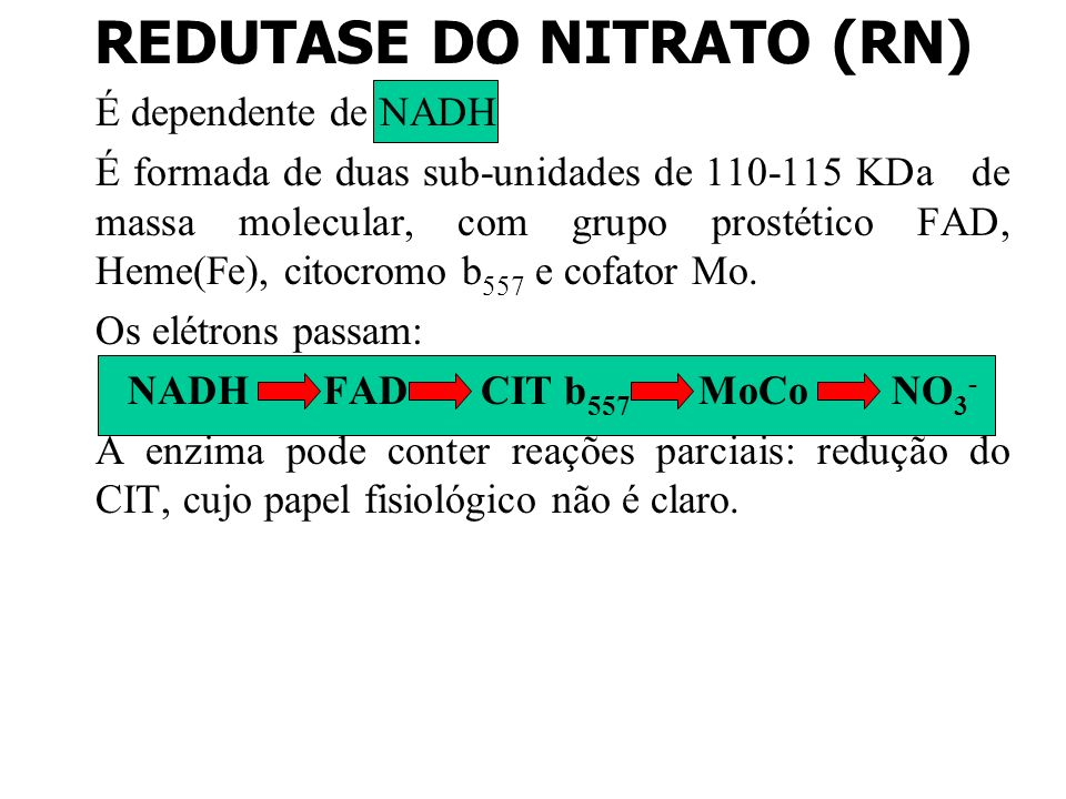 REDUTASE DO NITRATO (RN)