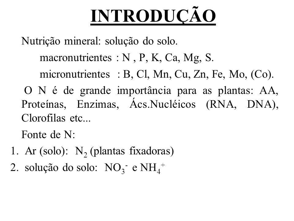 INTRODUÇÃO Nutrição mineral: solução do solo.