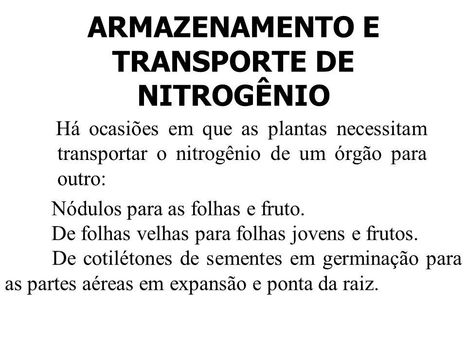 ARMAZENAMENTO E TRANSPORTE DE NITROGÊNIO