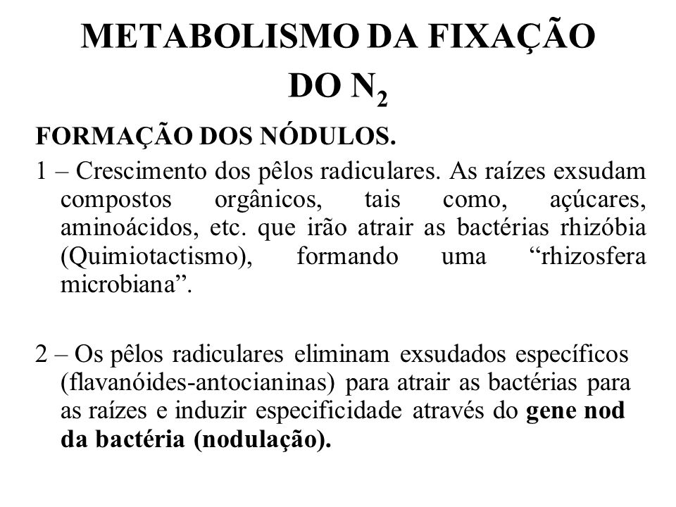 METABOLISMO DA FIXAÇÃO DO N2