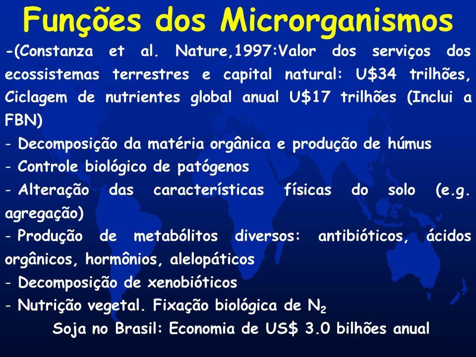Funções dos Microrganismos