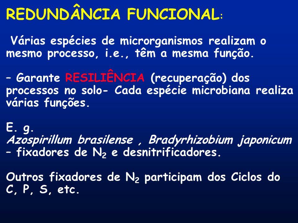 REDUNDÂNCIA FUNCIONAL:
