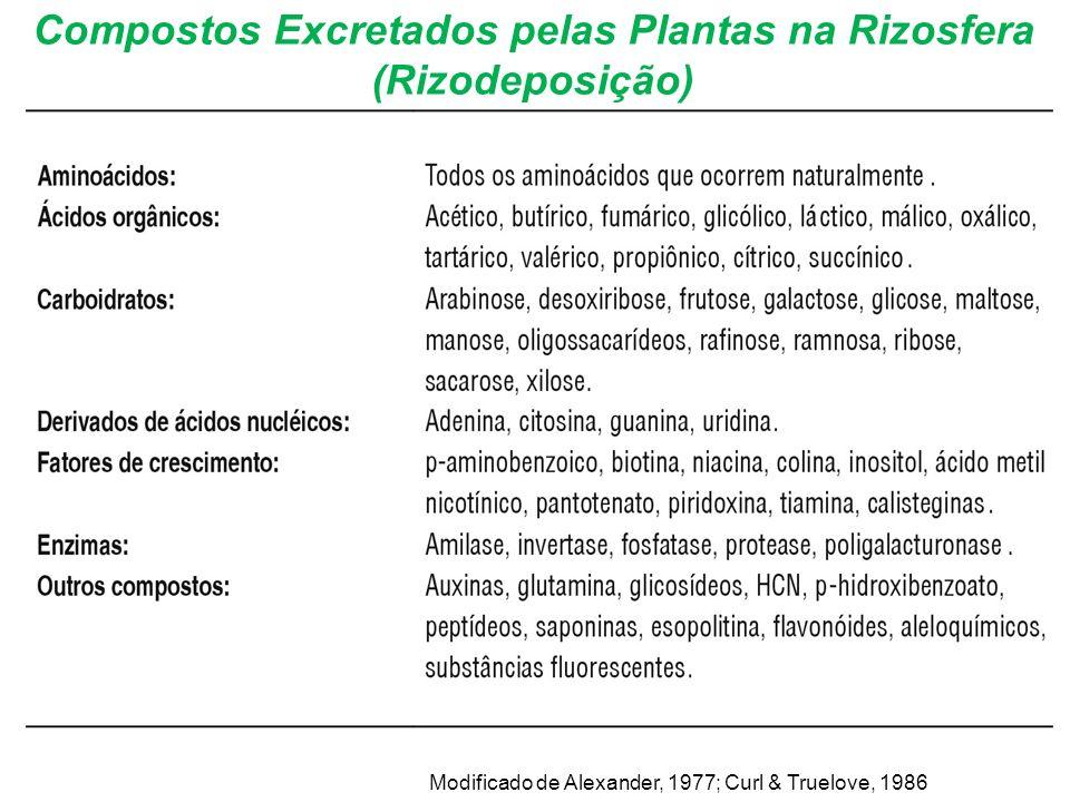 Compostos Excretados pelas Plantas na Rizosfera (Rizodeposição)