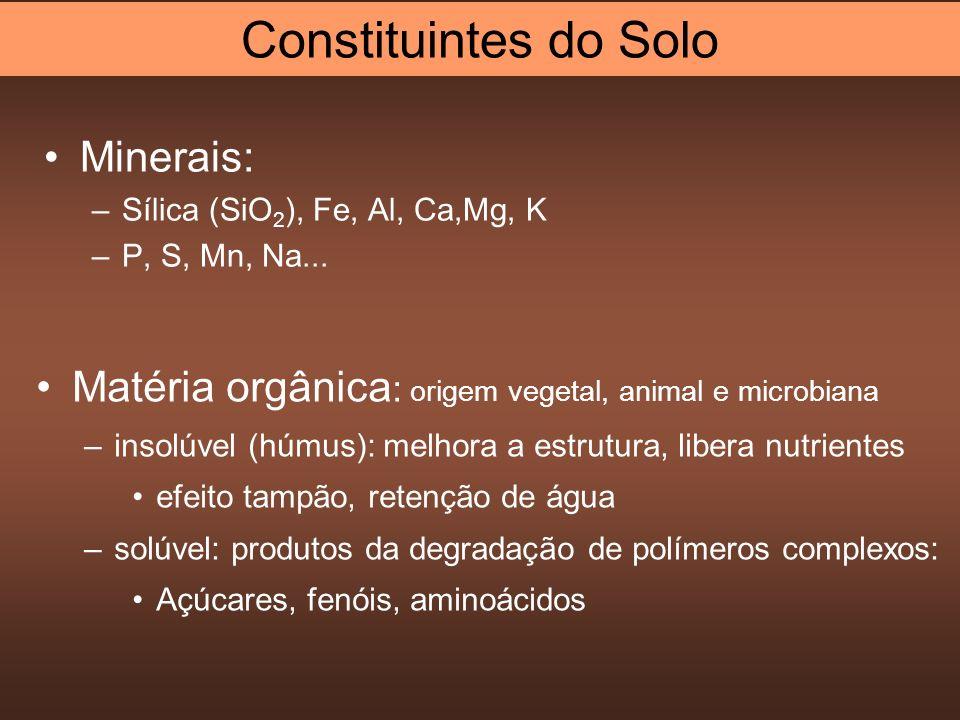 Constituintes do Solo Minerais: