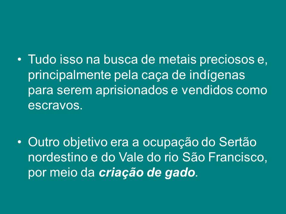 Tudo isso na busca de metais preciosos e, principalmente pela caça de indígenas para serem aprisionados e vendidos como escravos.