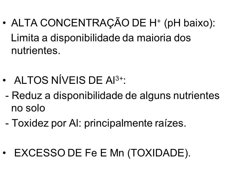ALTA CONCENTRAÇÃO DE H+ (pH baixo):