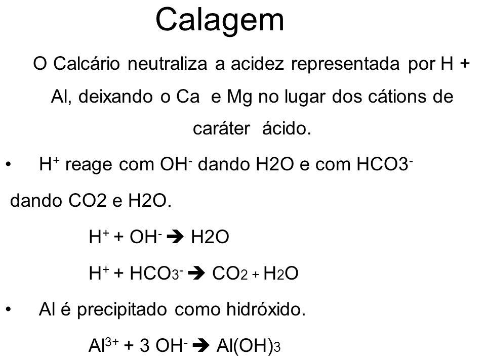 Calagem O Calcário neutraliza a acidez representada por H + Al, deixando o Ca e Mg no lugar dos cátions de caráter ácido.