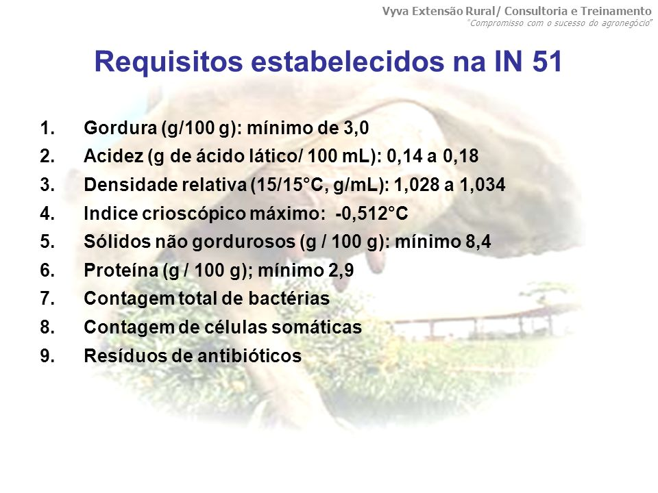 Requisitos estabelecidos na IN 51