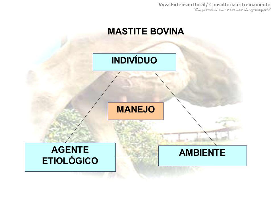 MASTITE BOVINA INDIVÍDUO MANEJO AGENTE ETIOLÓGICO AMBIENTE